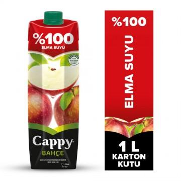 CAPPY M.SUYU 1LT %100 ELMA